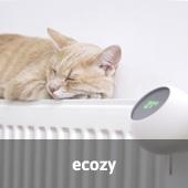 ecozy